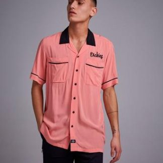 Dickies Weverton Flamingo Rosa