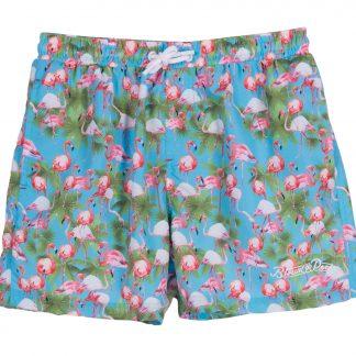 flamingo beachshorts, sea blue, xs, shorts